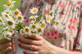 Female in summer park hold bouquet of daisy flowers Royalty Free Stock Photo