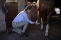 Female vet examining horse leg in stable Royalty Free Stock Photo