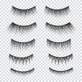 Feminine lashes vector set. False eyelashes