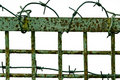 Fence with a barbed wire Stock Photos