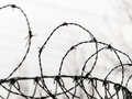 Fence with barbed wire a is secured symbolic photo for security prison and crime Stock Photos