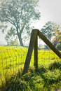 Fence in country on hazy day Stock Photos