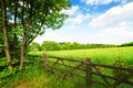Fence in the green field under blue sky Royalty Free Stock Photo