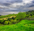 Fence on hillside meadow in mountain on dull day summer landscape the leading to forest fog rainy Stock Photos