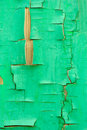 Fence with an old paint green color Stock Image