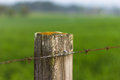 Fence Post Royalty Free Stock Photo