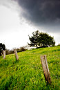 Fence tree and clouds composed landscape meadow Stock Image