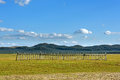 fence in WulanBu all grassland ancient battlefield Royalty Free Stock Photo