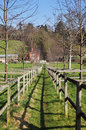 Fenced Footpath through an English Meadow Stock Image