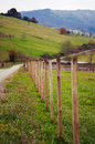Fenced pastures. Rural landscape Royalty Free Stock Photo