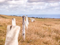Fences Of Easter Island
