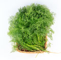 Fennel in a basket Royalty Free Stock Photo
