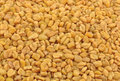 Fenugreek close up dried seeds of Stock Photography