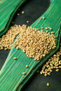 Fenugreek closeup on a green wooden background Royalty Free Stock Photo