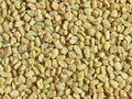Fenugreek seeds Royalty Free Stock Photo