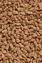 Fenugreek Seeds Royalty Free Stock Photos