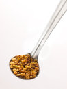 Fenugreek seeds Stock Photo