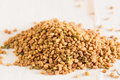 Fenugreek the spice which is used a lot in indian cooking Royalty Free Stock Images