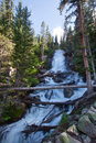 Fern Falls in Rocky Mountains Stock Image