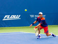 Fernando verdasco plays center court at the winston salem open Royalty Free Stock Photography