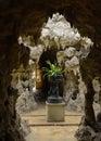 Fernery Swiss Gardens Royalty Free Stock Photo