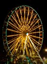 Ferris wheel the at night Royalty Free Stock Image