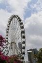 Ferriswheel in briscane australia is taken Royalty Free Stock Images