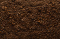 Fertile garden soil texture background top view Royalty Free Stock Photo