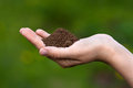 Fertile soil in hands of women Royalty Free Stock Photo