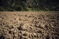Fertile soil Royalty Free Stock Photo