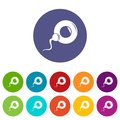 Fertilization egg icons set vector color Royalty Free Stock Photo