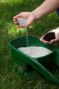 Fertilizing Lawn Stock Photos