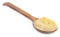 Ferula assafoetida or Hing spice Royalty Free Stock Photo