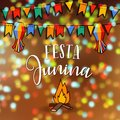 Festa junina, Brazilian june party. Greeting card, invitation. Latin American holiday. Vector illustration with bunting Royalty Free Stock Photo