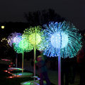 Festival of light moscow electric trees in park tsaritsino on circle in Royalty Free Stock Photos