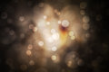 Festive abstract background with bokeh defocused lights and star