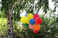 Festive balloons and birch colorful lake Royalty Free Stock Photo