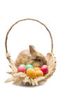 Festive Easter Bunny is sitting in a basket Royalty Free Stock Photo