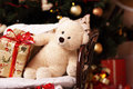 Festive soft bruin with gifts under the new year tree white looks at oneself merrily festively good looking and comfortably Stock Images