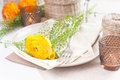 Festive table setting with flowers Stock Photography