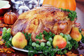 Festive Thanksgiving Dinner Royalty Free Stock Photography
