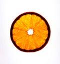 Fetta arancione Immagine Stock Libera da Diritti