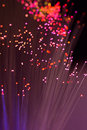Fibre Optic cable threads Royalty Free Stock Photo