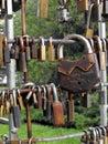 Fidelity padlocks. Royalty Free Stock Photo