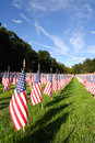 Field of American Flags  during US Independence Day Royalty Free Stock Photo
