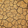 Field of baked earth Royalty Free Stock Photo