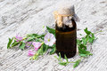 Field bindweed (Convolvulus arvensis) and pharmaceutical bottle Royalty Free Stock Photo