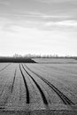 Field on black and white photo Stock Image