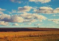 Field with blue cloudy sky Royalty Free Stock Photo