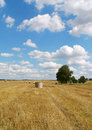 Field & blue sky Royalty Free Stock Images